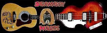 GDME/Strawberry Walrus Store